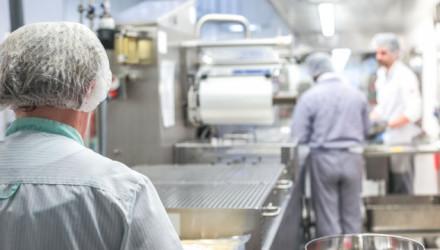 Corso E-learning di Aggiornamento sulla Sicurezza dei Lavoratori del Settore Alimentare