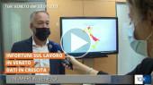 TG3 Regione Veneto - Intervista Ing. Mauro Rossato con i Dati dell'Osservatorio della Sicurezza